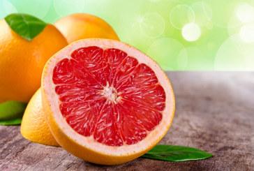 Grapefruitkernextrakt und die gesunde Wirkung