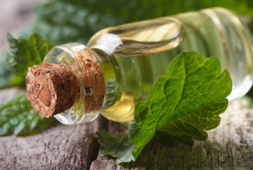 Die gesunde Wirkung von Borretschöl