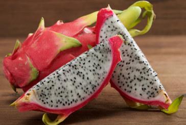 Drachenfrucht: Der pinke Exot ist sehr gesund