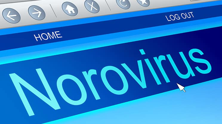 Norovirus Infektion erkennen und rechtzeitig behandeln