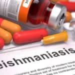 Leishmaniose – ein gefährliches Urlaubsandenken
