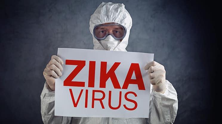 Zika – ein Virus mit Seuchenpotenzial