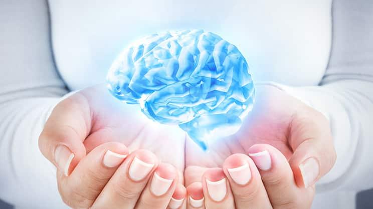 Multitasking ist ein Mythos – neue Fakten über das Gehirn
