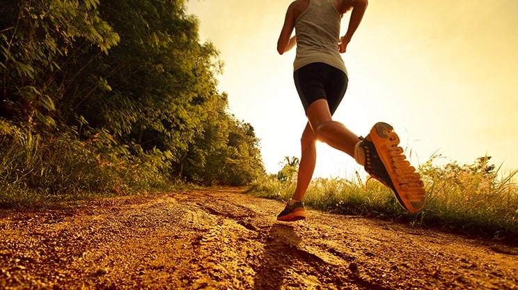 Mit dem richtigen Laufplan trainieren – so klappt's