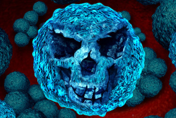 Wissenschaftler entdecken neuen Superbazillus