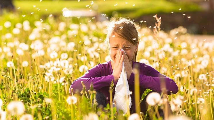 Heuschnupfen erkennen – Symptome und Abgrenzung