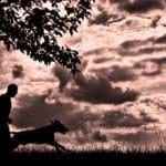 Fit werden mit Hund
