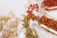 Wie die Ernährung unser Leben beeinflusst